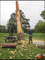 BNPS.co.uk (01202 558833)<br /> Pic: SteveJones/BNPS                                <br /> <br /> Bruce Kerry (left) and Steve Jones work on the bat.<br /> <br /> A village cricket club has turned a beloved tree that has stood on the boundary of their ground for 125 years into a giant carving of a cricket bat after it was condemned.<br /> <br /> The 16ft tall wooden bat took a tree surgeon and an assistant 18 months to carve after members of Shobrooke Park Cricket Club couldn't bring themselves fell the storm-damaged Scots Pine.<br /> <br /> The tree was planted on the eastern edge of the boundary when the club in Crediton, Devon, was established in 1890 and has been a feature ever since.