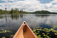 Water lillies and canoe at Craig Lake State Park near Michigamme Michigan.