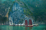 Vietnam's Ha Long Bay is one of the most dramatic landscapes in all of southeast Asia. Karst mountains and rocky pinnacles rise dramatically out of the bay. The unusual shape of the sails of the fishing craft complete the monochromatic scene. Ha Long Bay, Quang Ninh province, Vietnam