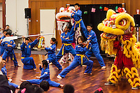 The climax of the Lunar New Year celebration at San Leandro's library - Vovinam Viet-Do-Dao of San Jose.