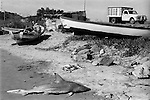 Mazatlan. Sinola, Mexico. Shark beached washed up Mexico 1973.