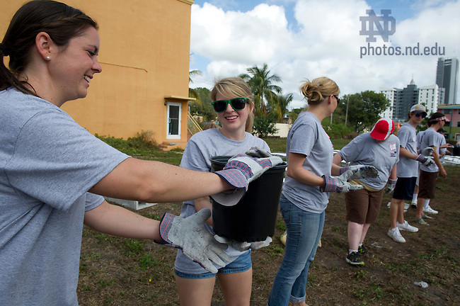 Jan. 6, 2013; Volunteers from Notre Dame and the University of Alabama build a garden in the Overtown neighborhood of Miami, Florida. The volunteers partnered with Roots in the City, an organization based in Overtown that promotes community development and beautification in inner-city areas. Photo by Barbara Johnston/University of Notre Dame
