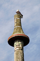 Bald eagle sitting on a west coast totem pole in Vanier Park, Vancouver, British Columbia, Canada