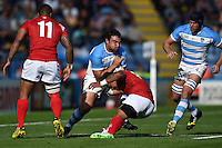 Agustin Creevy of Argentina takes on the Tonga defence. Rugby World Cup Pool C match between Argentina and Tonga on October 4, 2015 at Leicester City Stadium in Leicester, England. Photo by: Patrick Khachfe / Onside Images
