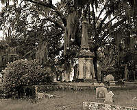 There are a number of ornate and impressive tombs in the Magnolia Cemetery. This is one of my favorites since it sits in a dimly lit area shaded by a moss covered live oak tree. A great example of Southern charm.