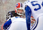 3 January 2010: Buffalo Bills' quarterback Ryan Fitzpatrick calls a play during a game against the Indianapolis Colts on a cold, snowy, final game of the season at Ralph Wilson Stadium in Orchard Park, New York. The Bills defeated the Colts 30-7. Mandatory Credit: Ed Wolfstein Photo