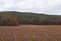 A freshly cropped field is pictured in Berkshire County, Massachusetts Wednesday October 2, 2013.