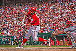 14 April 2013: Washington Nationals outfielder Bryce Harper in action against the Atlanta Braves at Nationals Park in Washington, DC. The Braves shut out the Nationals 9-0 to sweep their 3-game series. Mandatory Credit: Ed Wolfstein Photo *** RAW (NEF) Image File Available ***