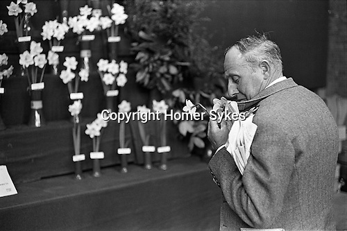 Victoria, London. 1969<br /> The Royal Horticultural Society flower show, a member of the public makes himself a buttonhole with some competition flowers.