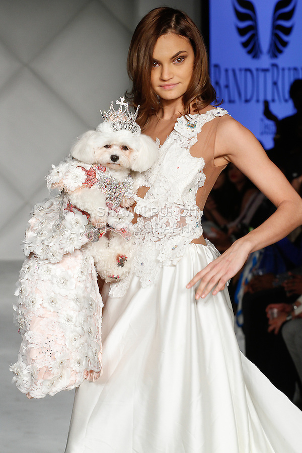 Dog walks runway in pet fashion outfit from Bandit Rubio Designs by Anthony Rubio; and model walks in a dress from the Ivon Reyes Couture collection, during Fashion Week Brooklyn Fall Winter 2014, at Industry City, on March 15, 2014.