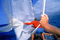 Sailing, pulling the jib out at sea.
