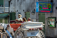It get hard to walk though all of the French Quarters so it always fun to take a ride on one of the many horse drawn carriages.