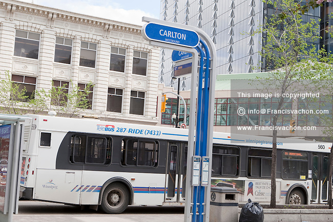 how to get winnipeg photo transit id