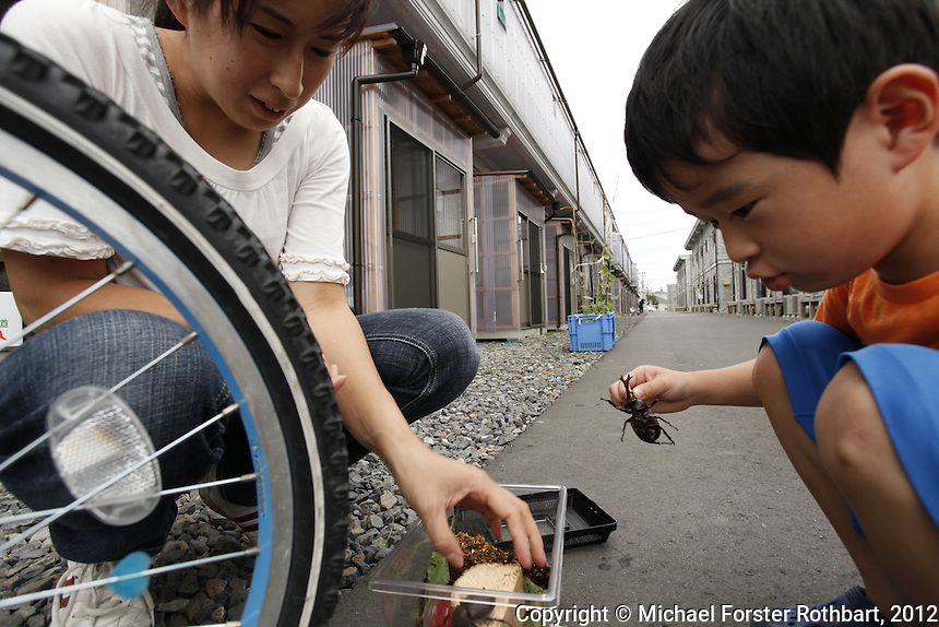 Fumiya Sekine, 6, and his mom, Kaori Sekine, play with his new pets, a pair of stag beetles. The family evacuated their village, 20 miles from the Fukushima Dai-ichi nuclear power plant, due to high radiation levels after the meltdown. They&rsquo;ve lived in a one-room, temporary refugee apartment in Koriyama since June 2011. They have no idea how long they&rsquo;ll stay.<br /> ------------------- <br /> This photograph is part the book of Would You Stay?, by Michael Forster Rothbart, published by TED Books in 2013. The photos come from Forster Rothbart&rsquo;s two long-term documentary photography projects, After Chernobyl and After Fukushima.<br /> &copy; Michael Forster Rothbart 2007-2013.<br /> www.afterchernobyl.com<br /> www.mfrphoto.com &bull; 607-267-4893 &bull; 607-436-2856<br /> 34 Spruce St, Oneonta, NY 13820<br /> 86 Three Mile Pond Rd, Vassalboro, ME 04989<br /> info@mfrphoto.com<br /> Photo by: Michael Forster Rothbart<br /> Date:  7/23/2012<br /> File#:  Canon &mdash; Canon EOS 5D Mark II digital camera frame 81506