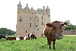Foto: VidiPhoto<br /> <br /> DOORNENBURG - Sluiting dreigt voor een van de mooiste en bekendste Middeleeuwse kastelen van Nederland: kasteel de Doornenburg in de gelijknamige Gelderse plaats. De burcht heeft de enige nog functionerende kasteelboerderij (met Lakenvelder vleesvee) van Nederland binnen haar muren. Die houdt dan ook op te bestaan. De kosten voor exploitatie van zowel kasteel, horeca als boerderij zijn te hoog, ondanks de hulp van 50 vrijwilligers. Op kasteel Doornenburg zijn diverse reclamefilmpjes (&quot;ze smelten de kazen&quot;) en delen van historische films opgenomen, naast de bekende tv-serie Floris met daarin hoofdrolspeler Rutger Hauer. Het bestuur van eigenaar Stichting tot Behoud van den Doornenburg heeft donderdag een brief geschreven aan de provincie met een verzoek om subsidie. Het steekt de stichting dat de Gelderse kastelenstichting een miljoenenbijdrage krijgt en de Doornenburg geen stuiver.