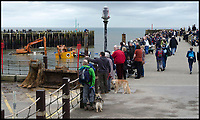 BNPS.co.uk (01202 558833)<br /> Pic: GrahamHunt/BNPS<br /> <br /> That's embarrassing - Crowds gathered yesterday to watch the red faced attempts to retrieve the digger.<br /> <br /> Time and tide waits for no 'work'men.<br /> <br /> Red faced workmen had to abandon their digger as the tide rushed in to West Bay harbour in Dorset on saturday - despite desperate attempts to  rescue it the tide overwelmed their efforts.