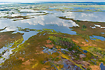 Chesapeake Bay wetlands. Rising ocean levels are threatening wetlands and forests in the Chesapeake Bay.