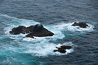 The water of the ocean to the west of Point Sur Light Station was turned sea foam green thanks to the action of waves and high winds around rocks rising out of the water.