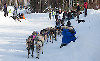 Jessie Royer mushes down Wilford Lane in Willow after starting the 2013 Iditarod. (Stephen Nowers photo)1