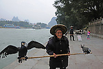 a traditional Li River fisherman,  poses for photos with his 2 fishing cormorants tethered to a bamboo pole on the wharf of the town of Yangchou, China