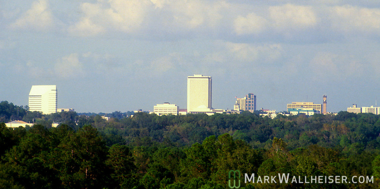 Tallahassee Florida skyline from the Myers Park neighborhood area