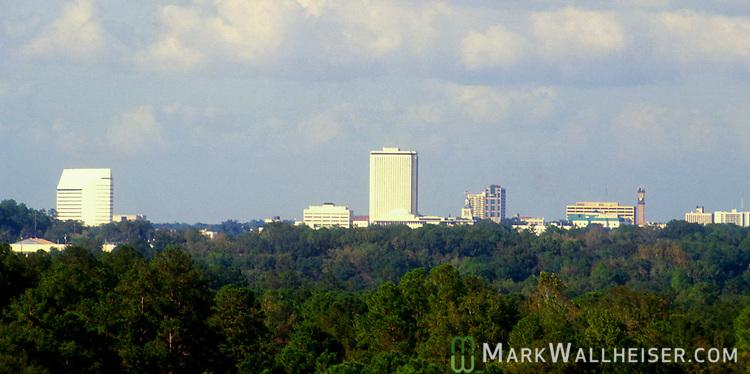 Tallahassee Florida skyline from the Myers Park neighborhood area
