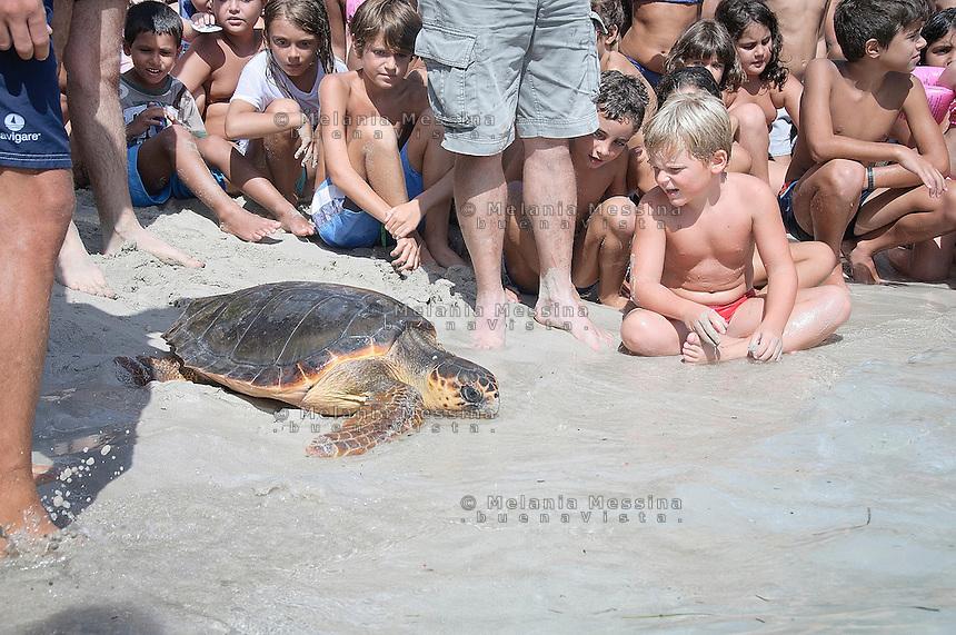 Palermo, una tartaruga caretta caretta viene rilasciata nella spiaggia di Mondello dopo essere stata guarita dai volontari del WWF.<br /> Palermo, a loggerhead turtle is released into the Mondello beach after being healed by volunteers from WWF