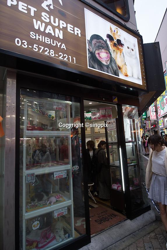 Pet Shop Tokyo Pet Shop in Shibuya Tokyo