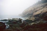 SEACOAST<br /> Foggy Coast<br /> Acadia National Park