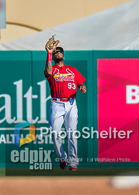 6 March 2016: St. Louis Cardinals outfielder David Washington pulls in a fly ball during a Spring Training pre-season game against the Washington Nationals at Roger Dean Stadium in Jupiter, Florida. The Nationals defeated the Cardinals 5-2 in Grapefruit League play. Mandatory Credit: Ed Wolfstein Photo *** RAW (NEF) Image File Available ***