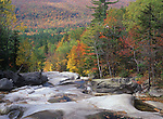 Fall view of Wight Brook at the Step Falls Preserve in Newry, Maine, USA
