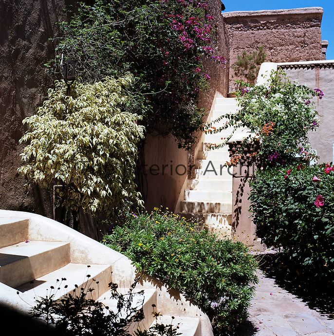 Staircases lead up to bedroom suites through gardens planted with bougainvillea