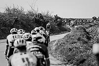 racing the twisting narrow belgian farm roads<br /> <br /> 60th E3 Harelbeke (1.UWT)<br /> 1day race: Harelbeke &rsaquo; Harelbeke - BEL (206km)
