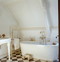 A contemporary bath tub compliments an otherwise traditional bathroom