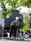 "Bare foot Amish girl walks toward buggies in Pennsylvania Dutch Country Amish Country in Lancaster County PA, Pennsylvania Dutch in Amish Country Lancaster County Pennsylvania, Amish, Horse and buggy with amish family on backroads of Pennsylvainia, buggy, amish family, buggy and horse, Commonwealth of Pennsylvania, Commonwealth of Pennsylvania, natives, Northeasterners, Middle Atlantic region, Philadelphia, Keystone State, 1802, Thirteen Colonies, Declaration of Independence, State of Independence, Liberty, Conestoga wagons, Quaker Province, Founding Fathers, 1774, Constitution written, Photography history, Fine art by Ron Bennett Photography.com, Stock Photography, Fine art Photography and Stock Photography by Ronald T. Bennett Photography ©, All rights reserved copyright Ron Bennett Photography.Com, FINE ART and STOCK PHOTOGRAPHY FOR SALE, CLICK ON  ""ADD TO CART"" FOR PRICING,"