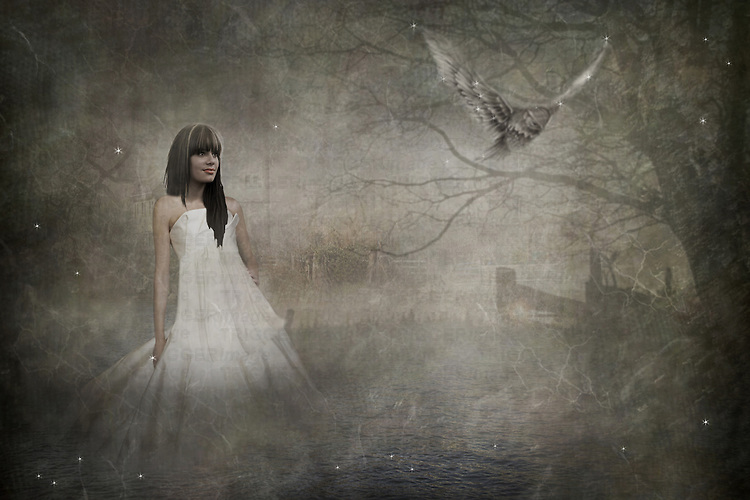 Female with dark hair in a long white dress in the woods with an owl
