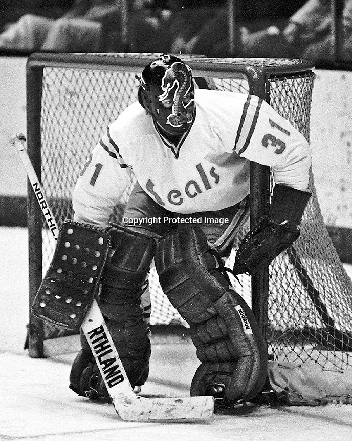 "California Seals ""The Cobra"" Gary Simmons in goal. photo/Ron Riesterer."