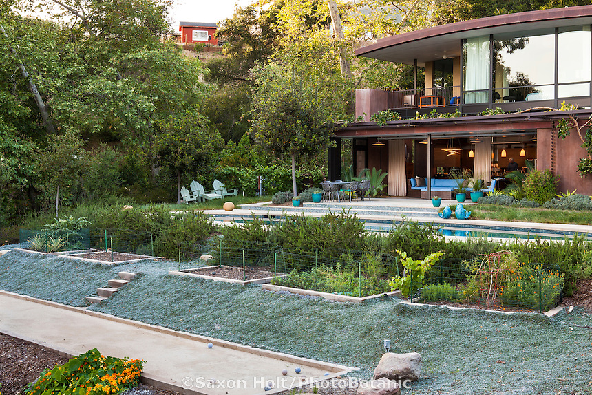 Coyote House, SITES® residential home, LEED Platinum, with sustainable garden, vegetable beds and Dymondia groundcover, Santa Barbara California, Susan Van Atta landscape architect, Ken Radtkey architect,