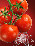 Fresh juicy appetizing tomatoes on the wine splashed with water