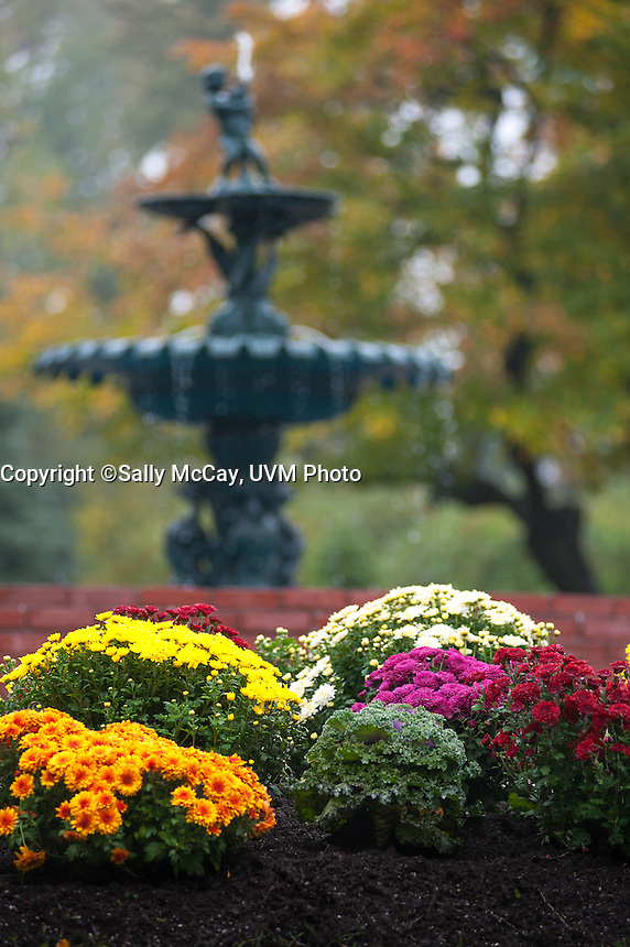 Flower garden in front of the Howard Fountain, Fall UVM Campus
