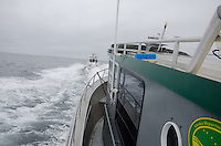 A pair of charter boats head of Montague Island in the Gulf of Alaska to fish for halibut in June, 2011.