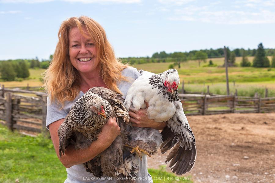 ... Brahma Rooster Vs Hen Chickens-lb1207_0024.jpg Black Brahma Chicken