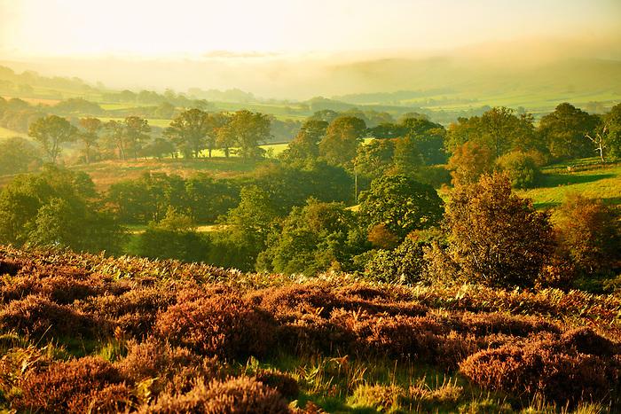 Westerdale at sunrise. North Yorks National Park, North Yorkshire, England