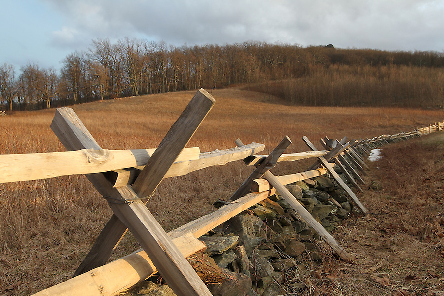 Scenic view of an old fence line on the Blue Ridge Parkway in Nelson County, VA. Photo/Andrew Shurtleff