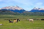 Tres Valles, Patagonia, Argentina