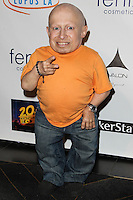 HOLLYWOOD, LOS ANGELES, CA, USA - SEPTEMBER 18: Verne Troyer arrives at the 'Get Lucky For Lupus' 6th Annual Poker Tournament held at Avalon on September 18, 2014 in Hollywood, Los Angeles, California, United States. (Photo by Celebrity Monitor)