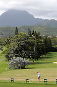 Kailua, Hawaii - December 29, 2008 -- United States President-elect Barack Obama warms up on the driving range to play golf with friends in Kailua, Hawaii on Monday, December 29, 2008. Obama and his family arrived in his native Hawaii December 20 for the Christmas holiday..Credit: Joaquin Siopack - Pool via CNP