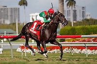 Howe Great(1) with jockey John Velazquez winning the Palm Beach Stakes(G3T) at Gulfstream Park, Hallandale Beach Florida. 03-11-2012