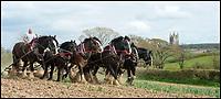 Old ways are still the best on this Devon farm.