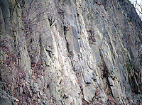 PALISADES SILL<br /> Diabase, The Igneous Rock That Forms The Cliffs<br /> The Palisades are the result of differential erosion of tilted diabase, intrusive igneous rock that forms the cliffs, and less resistant shales and sandstones above and beneath the diabase.